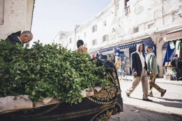Essaouira (63)