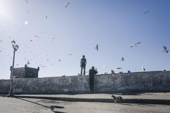 Essaouira (72)