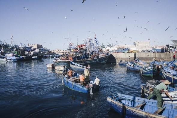 Essaouira (91)